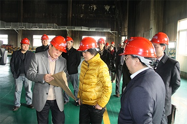 On January 31, 2012, the then Secretary of the Jiaxing Municipal Party Committee, Lu Jun, led the municipal development and reform committee and other city-level department heads to the company to investigate